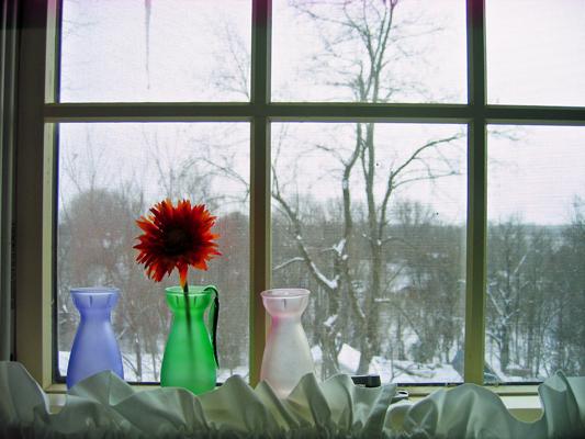 Dining Window EM